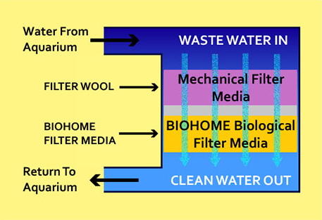 Biohome Filter Media